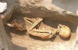 שלד שהתגלה בחפירות ארכיאולוגיות ביפו