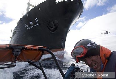 צילום: Sea Shepherd CS