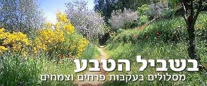 "צילום: יעל אילן, לע""מ"