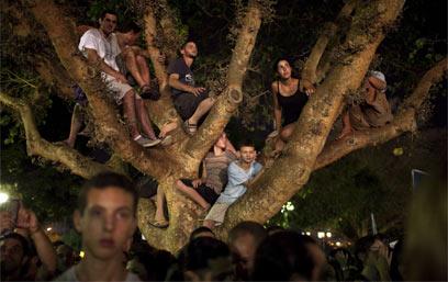 תל אביב. העץ הנדיב למפגינים (צילום: AFP)
