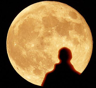 לילות ירח – המיטב של הקלאסיקה