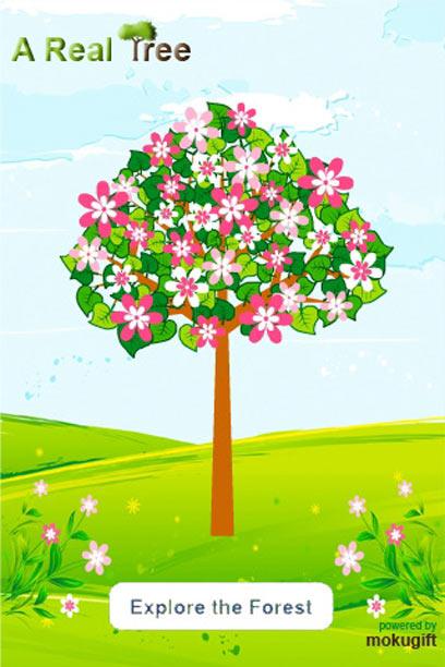 עץ פורח