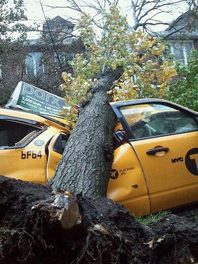 Tovább nőtt a Sandy poszttrópusi ciklon halálos áldozatainak a száma, amely az NBC televízió szerint elérte a 46 főt