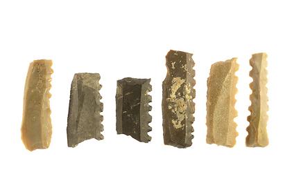 כלי הצור שנחשפו במהלך החפירה (צילום: קלרה עמית, רשות העתיקות)