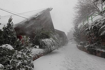 """השלג שנערם בנווה אטי""""ב ברמת הגולן (צילום: בן פרידמן)"""