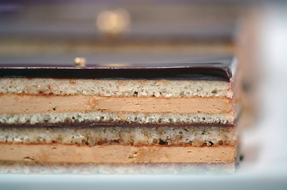 דוגמנית. עוגת האופרה של רביבה אפל (צילום: דנה זונשיין)