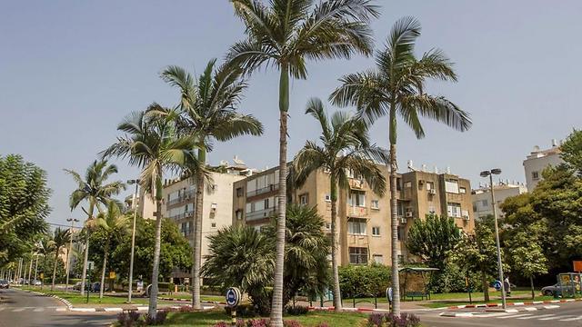 ענק מחיר למשתכן: דירה ברעננה ב-1.35 מיליון HX-17