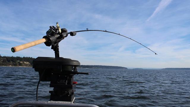 בלתי רגיל דייג תופס דגים? החכה תודיע לו XR-02