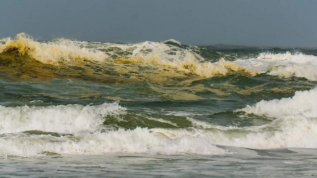 מקורי זיהום בחוף פלמחים: צבע המים הפך לצהוב-כתום UM-07