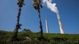 צילום: EPA