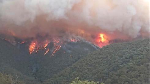 Australian bushfires  (Photo: AP)