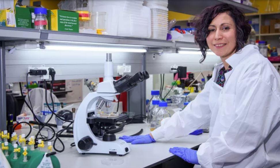 Report: Hackers target Israeli researchers working on coronavirus vaccine