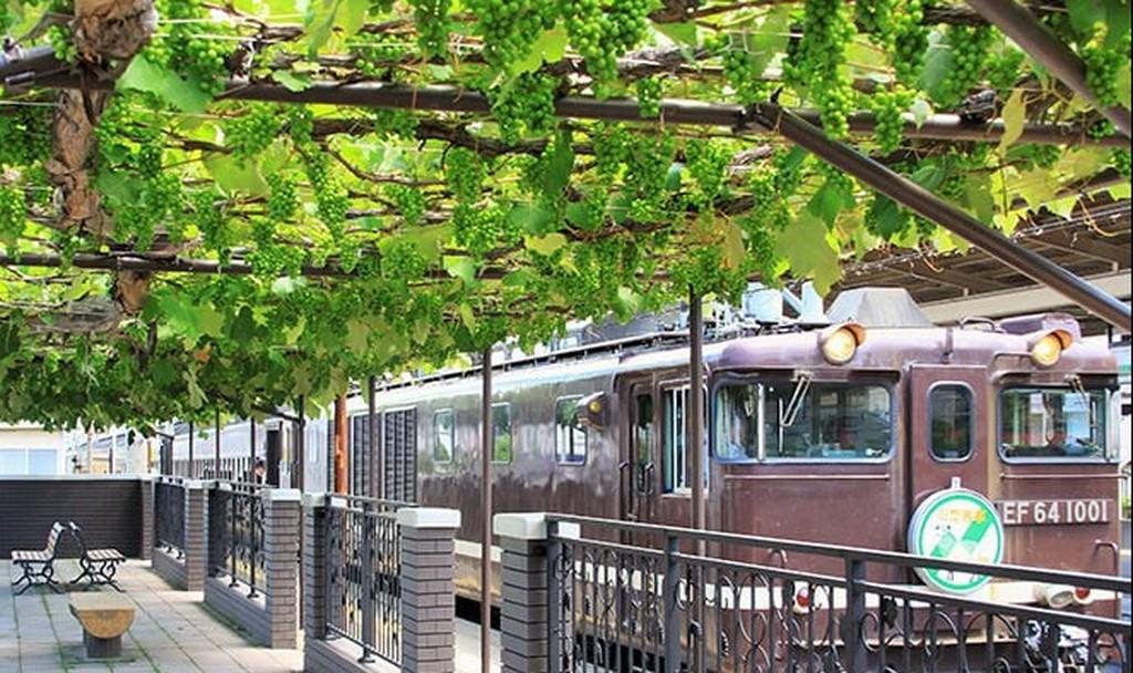 יין מתחנת רכבת: רק ביפן (צילום מסך)