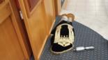 באדיבות בתי הכנסת